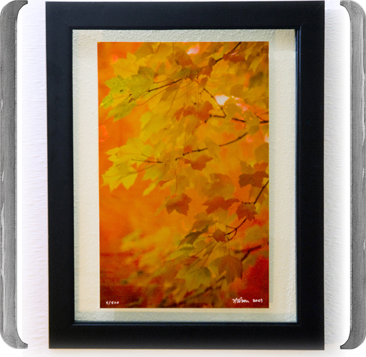 TITLE: AIR is COLORED AUTUMN