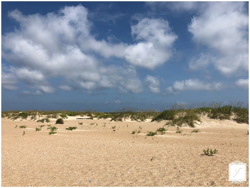 The Jacksons Weekly blog post covering our destinations wedding on Cape Hatteras in North Carolina, blue berry picking in Greensburg and Carolines adventures.