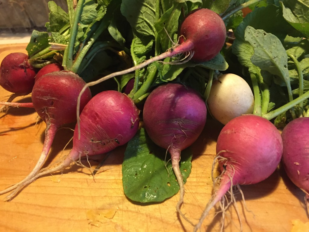 radishes on cutting board up close