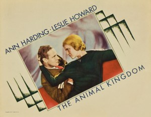 Poster - Animal Kingdom, The_02