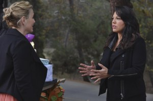 normal_scnet_greys10x13still_002