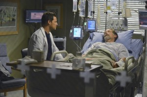 normal_scnet_greys10x13still_011