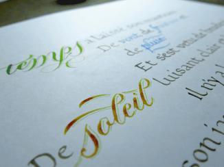 Colourful Details
