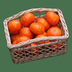 Provence Bread Basket