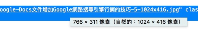 Wordpress提昇速度的秘訣,馬上讓Google Pagespeed Insights從58分到88分 13