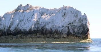 Isle of Wight Needles with Cormorants