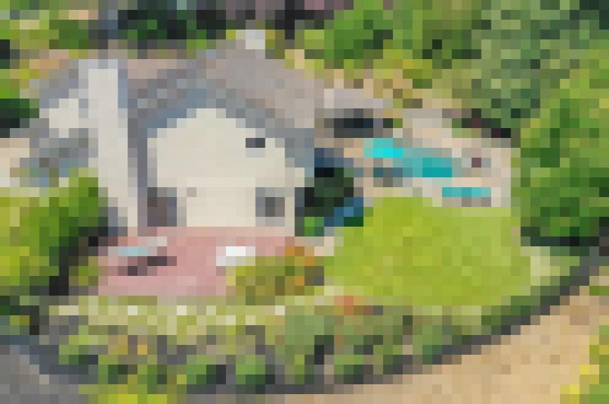 7971-Foothill-Knolls-Dr-Pleasanton-48-of-55-1560016883-2560x1700