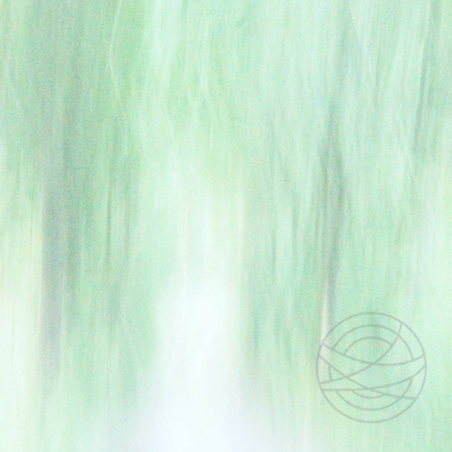 2 º Duality - Abstract realistic fine art forestscape photography by Jacob Berghoef