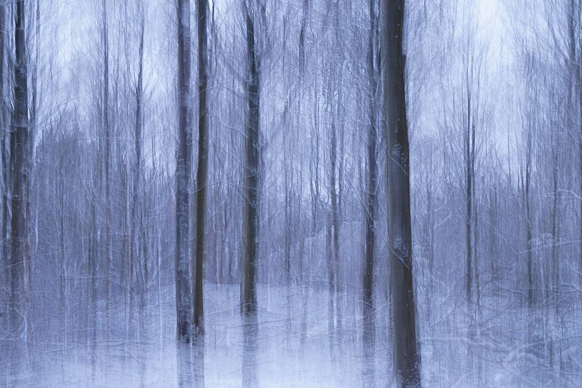 Floating on Frozen Silence - Abstract realistic and impressionistic fine art nature photography by Jacob Berghoef