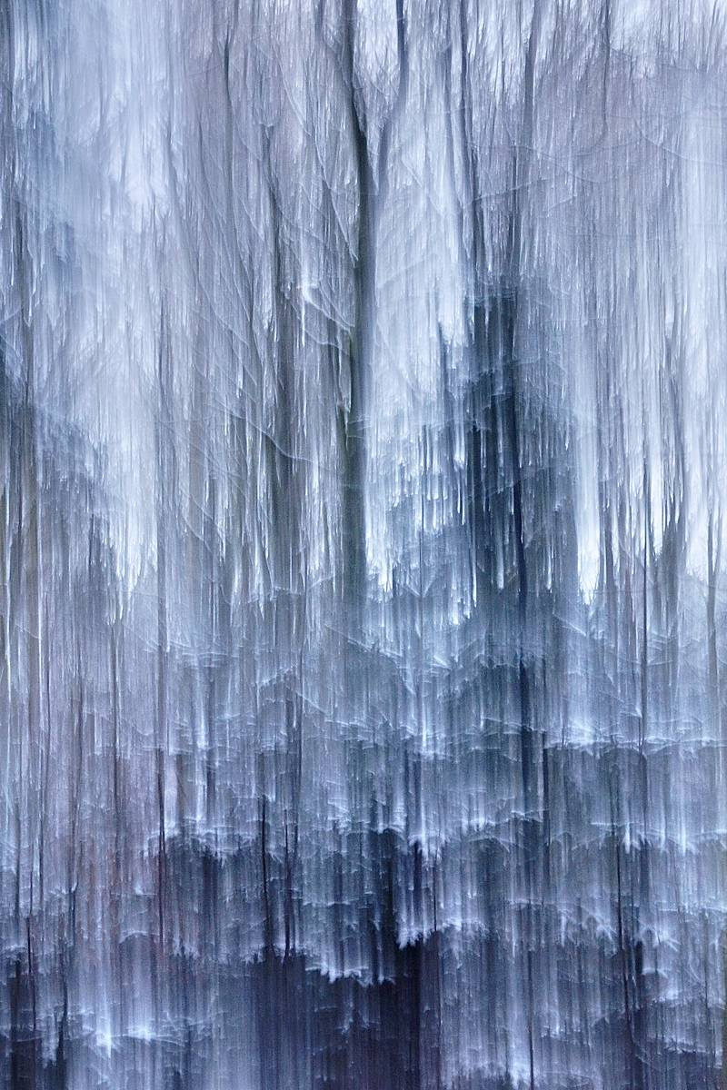 Frozen Scent - Abstract realistic and impressionistic fine art nature photography by Jacob Berghoef