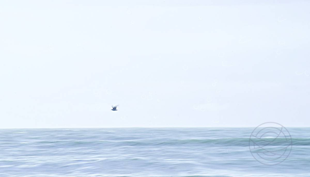 Autumn Seas - The North Sea beach here where I live is mostly largely deserted. And on a cold autumn afternoon, we only see a seagull every now and then. - Abstract realistic fine art sunset photography by Jacob Berghoef