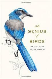US book design