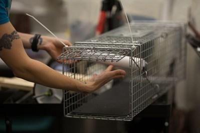 Mikel's DNA sampling trap
