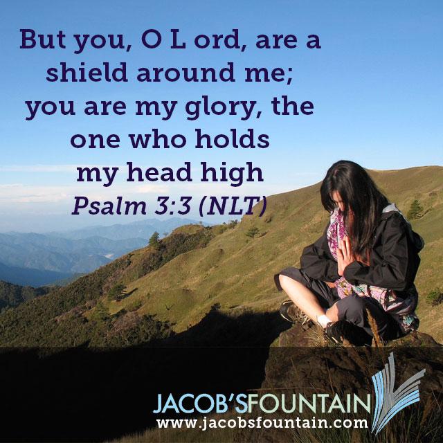 psalm-3-3-meme - Jacob's Fountain