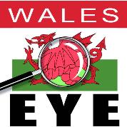 WalesEye logo