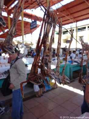 "Some strange animal ""dry"" hanging for sale at Arequipa market"