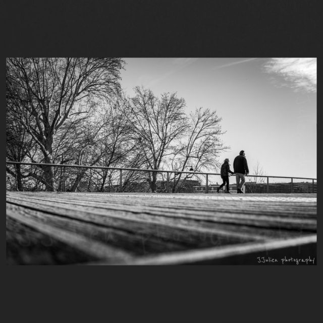 Winter's walkway – Black and white Photo Print