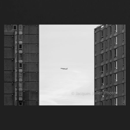 Freedom – Art Photo Print