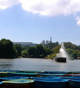 Zoo Lake on Saturday morning