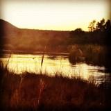 InstagramCapture_0958c345-c0df-477f-bc2a-4ffa9013ee2d