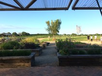 Looking out onto the farm