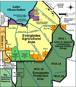 Map south of Lake O. showing EAA, STAs, and WCAs. (Map Everglades Foundation, public)