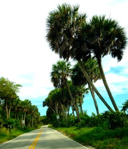 Going home along Indian River Drive...