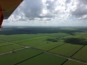 Agricultural lands.