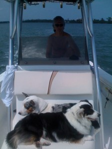 Bo and Baron enjoying a boat ride along the IRL.