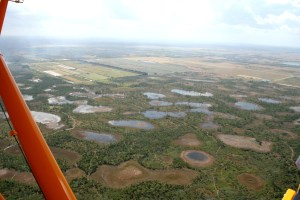 Ponds and bogs that are still left in undeveloped areas of Matin County. (Photo JTL 2015)