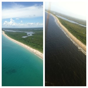 Atlantic shoreline just south of St Lucie Inlet contrasted 6-20-18 and 9-8-15. Dark waters reflect discharges from Lake Okeechobee and area canals  C-23; C-24, and C-44. (Photos Jacqui Thurlow-Lippisch and Ed Lippisch)