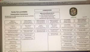 Organizational Chart FWC 2015