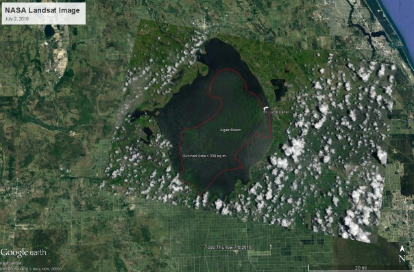"New calculations estimate the algae bloom in Lake Okeechobee to be 239 square miles. Based on the latest images from NASA on July 2nd, the algae bloom has grown from 33 square miles on May 9th to now take up almost 1/3 of the lake. ""This toxic algae is what has been discharged into the St. Lucie Estuary and the Indian River Lagoon, making its way through our waterways and onto local beaches. We need to stop the discharges from Lake Okeechobee and send the water south the Everglades, where it is desperately needed."" - Mark Perry, Executive Director"