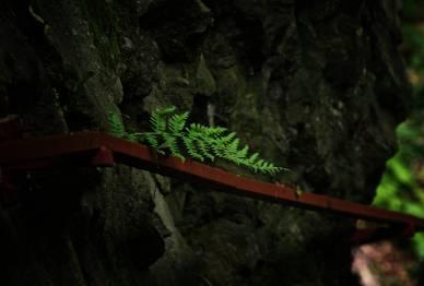 Wąskie ścieżki nad kilkunastometrowymi przepaściami zmuszają do korzystania z wbitych w skałę poręczy. Sudecka via ferrata?
