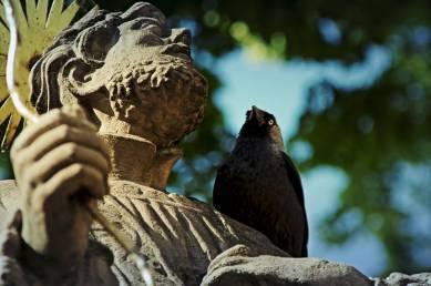 Ptaszysko przerwała litanię żali i zerknęło w jego oczy.