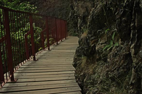 Podwieszanymi mostkami do punktu widokowego