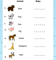 Zoo Animal Classification Worksheets   Printable Worksheets and Activities  for Teachers [ 2560 x 1810 Pixel ]