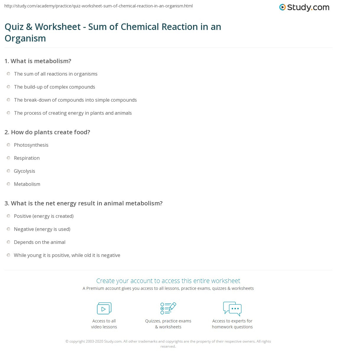 30 Introduction To Reactions Worksheet Answers