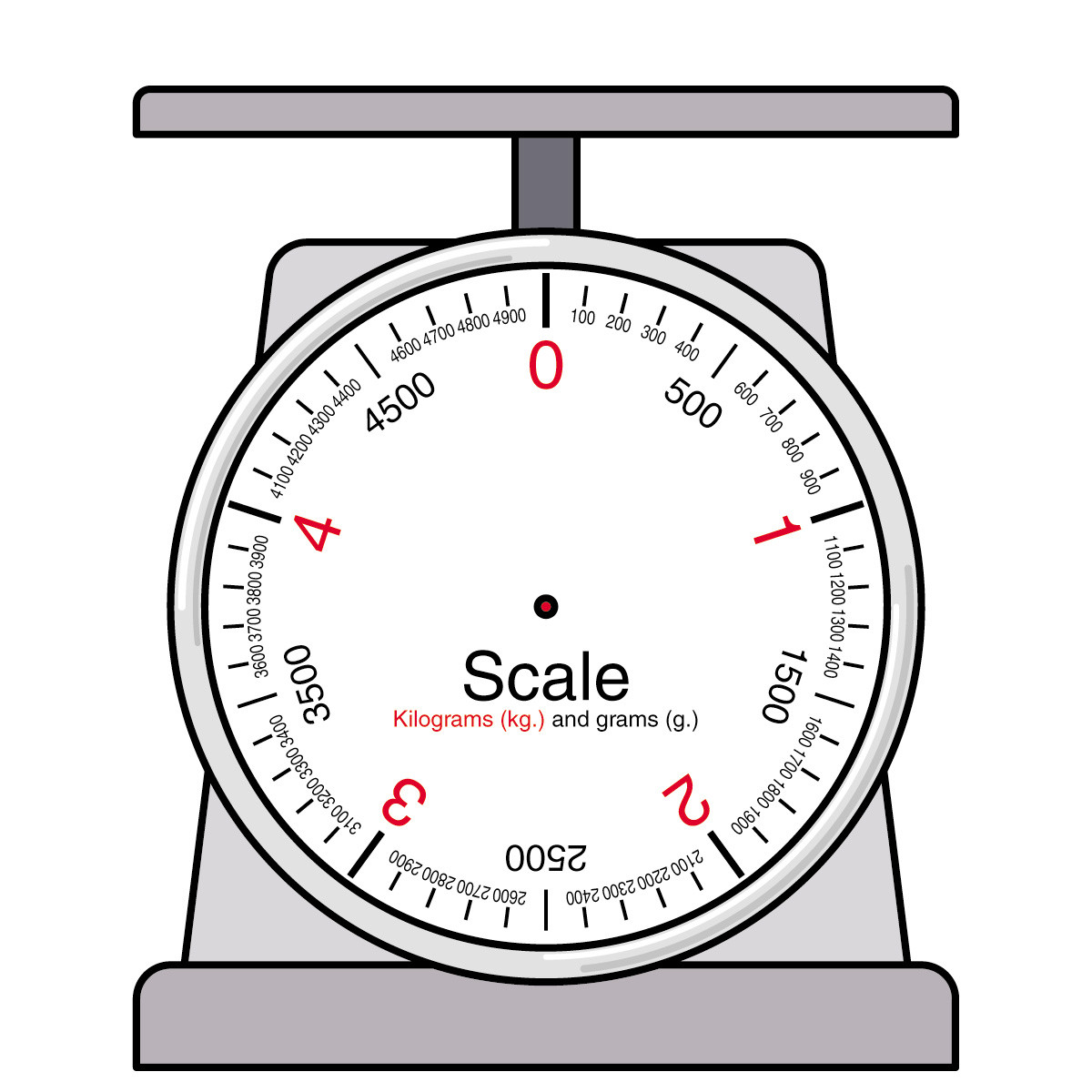30 Reading A Spring Scale Worksheet