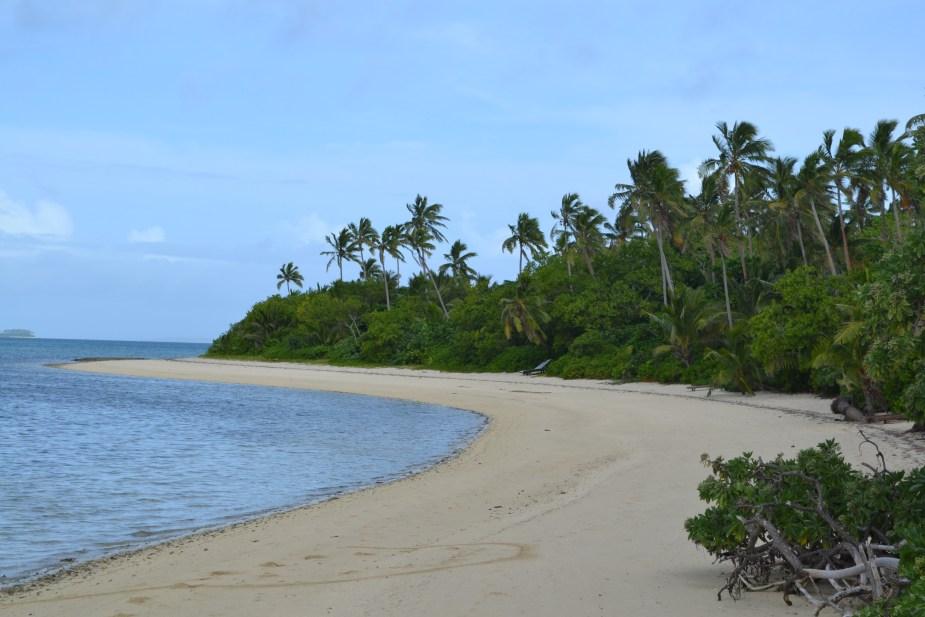 snorkelling at Fafa island, Tonga, image by Jade Jackson