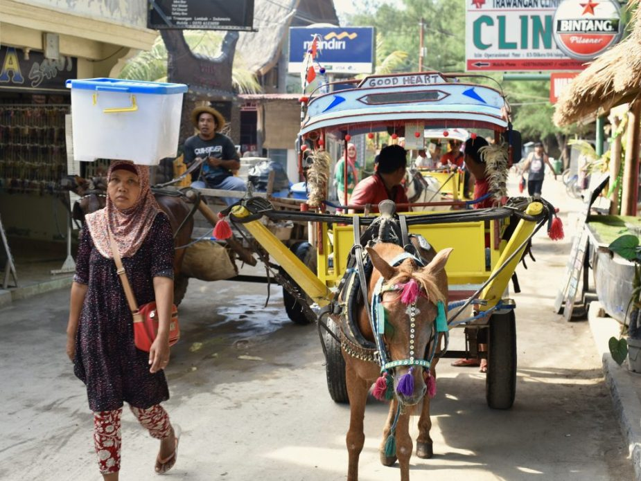 Gilli Trawangan, Donkey cart, Gilli Islands Lombok, woman walking with water on head, Lombok Indonesia, things to do in Lombok for 3 days, image by Jade Jackson