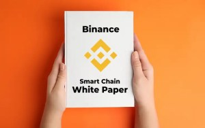 Binance (BNB) Smart Chain White Paper Released