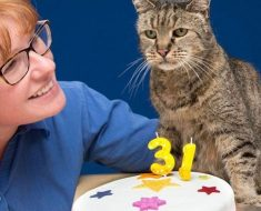 The Oldest Cat In The World, 31-Year-Old, Still Has Many Lives Left birthday..
