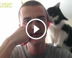 Quand il veut jouer, ce chat a une façon amusante de le faire comprendre à son maître