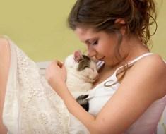 Pourquoi mon chat me lèche et dort sur moi : les signes d'attachement du chat