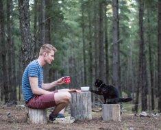 Australie : il plaque tout et achète un van pour faire le tour du pays avec son chat