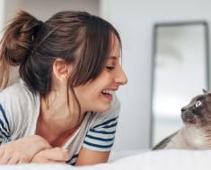 5 raisons pour lesquelles vous devriez parler à votre chat