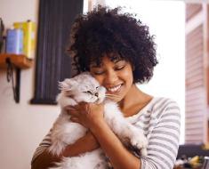 9 façons surprenantes dont les humains sont comme des chats