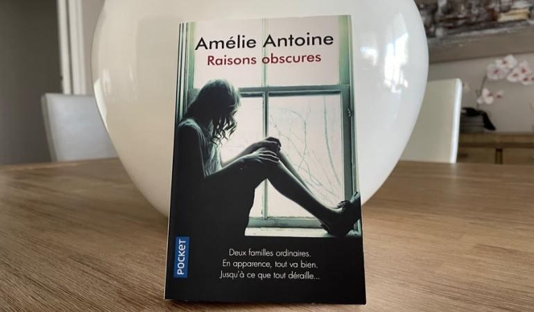 fenêtre jeune femme raisons obscures Amélie Antoine