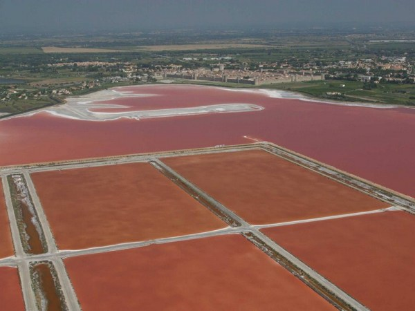 Red water around Aigues Mortes